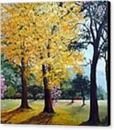 Poui Trees In The Savannah Canvas Print