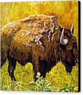 Prairie Companions Canvas Print by Michael Durst