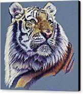 Pretty Boy Siberian Tiger Canvas Print by Mary Dove