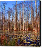 Pretty Swamp Scene Canvas Print by Susanne Van Hulst