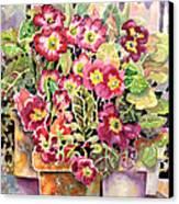 Primroses In Pots Canvas Print by Ann  Nicholson
