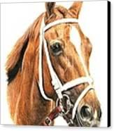Princess Of Sylmar Canvas Print by Pat DeLong