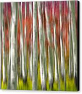 Progression Of Autumn Canvas Print