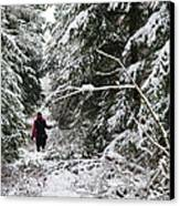 Protective Forest In Winter With Snow Covered Conifer Trees Canvas Print