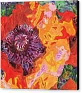 Psychedelia Canvas Print