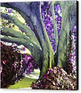 Psychedelic Purple Fuschsia Earthy Tree Street Landscape Los Angeles Cool Artistic Affordable Art Canvas Print