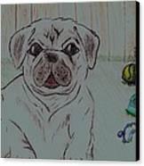 Pug Yard Canvas Print by Shaunna Juuti
