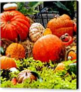 Pumpkin Harvest Canvas Print by Karen Wiles