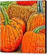 Pumpkin Canvas Print by Baywest Imaging