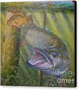 Pumpkinseed Peril Canvas Print by Charles Weiss