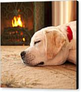 Puppy Sleeping By A Fireplace Canvas Print