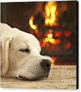 Puppy Sleeping By The Fireplace Canvas Print by Diane Diederich