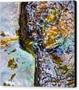 Purl Of A Brook 2 - Featured 3 Canvas Print by Alexander Senin
