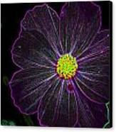 Purple Charisma Canvas Print