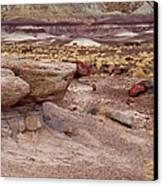 Purple Earth Canvas Print