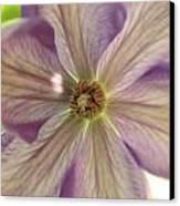 Purple Flower Canvas Print by Thomas Leon