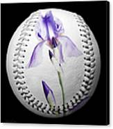 Purple Iris High Key Baseball Square Canvas Print by Andee Design