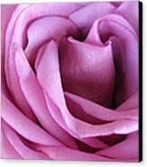 Purple Mood Canvas Print by Etti PALITZ