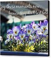 Purple Pansies And Life Quote Canvas Print by Nishanth Gopinathan