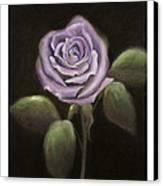 Purple Passion Canvas Print by Nancy Edwards