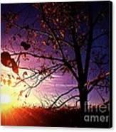 Purple Skies And Walnut Trees Canvas Print