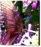 Purple Wings Canvas Print