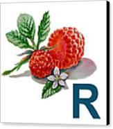 R Art Alphabet For Kids Room Canvas Print