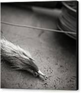 Rabbit Strip Fly Canvas Print