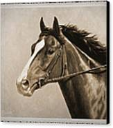 Race Horse Old Photo Fx Canvas Print by Crista Forest