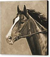 Racehorse Painting In Sepia Canvas Print