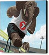 Racing Running Elephants In Athletic Stadium Canvas Print by Martin Davey