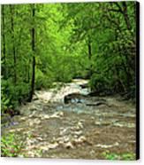 Raging Waters - West Virginia Backroad Canvas Print