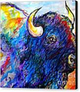 Rainbow Buffalo Canvas Print by M C Sturman