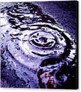Raindrop Canvas Print by Lucy D