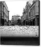 Raindrops Canvas Print
