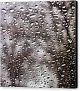 Raindrops Canvas Print by Richie Stewart