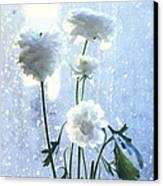 Raining Day  Canvas Print by Etti PALITZ