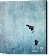 Ravens Flight Canvas Print by Priska Wettstein