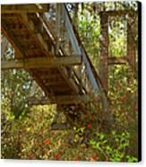 Ravine State Gardens Palatka Florida Canvas Print