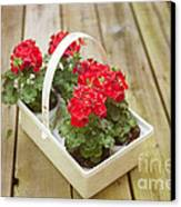 Ready To Plant Canvas Print by Kay Pickens