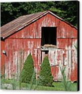Red Barn Two Trees Canvas Print by Paulette Maffucci