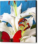 Red Butterfly On White Tiger Lily Canvas Print by Garry Gay