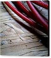 Red Cable Canvas Print by Jaime Neo