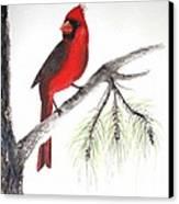 Red Cardinal Canvas Print