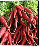 Red Carrots Canvas Print by Charlette Miller