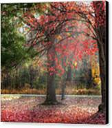 Red Dawn Canvas Print by Bill Wakeley