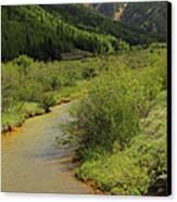 Red Mountain Creek - Colorado  Canvas Print by Mike McGlothlen