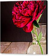 Red Peony Flower Vase Canvas Print by Edward Fielding