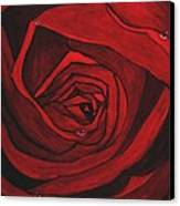 Red Rose  Canvas Print by Kat Poon