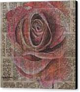 Red Rose Canvas Print by Kathy Weidner